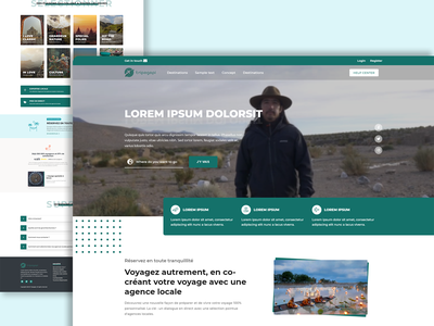 Tripagapi - Travel and Tours chill france website logo hosting ui illustration design