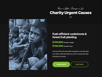 Charity Donate Section UI