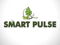 Smart Pulse