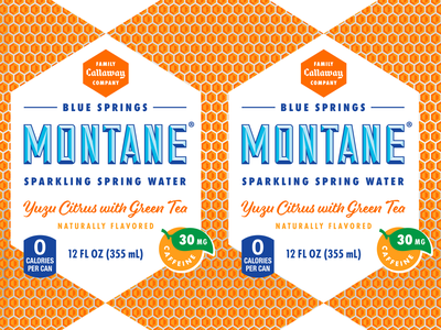 Montane Yuzu with Green Tea Can Design sparkling water packaging can package design