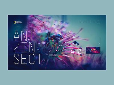 National Geographic A.02 - Concept modular minimal layout fashion web design ux screen desktop concept ui