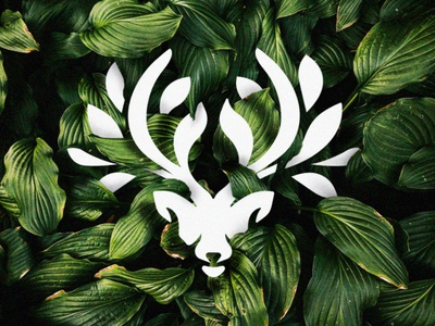 deerleaf leaf logo nature logo nature leaf flat minimal deer illustration deer head deer logo deer branding animal design animal illustration logo design logomark design brand logo graphic  design