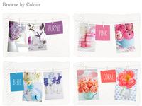 Blog Colour Page