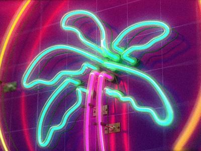 Palm Tree Neon Sign🌴