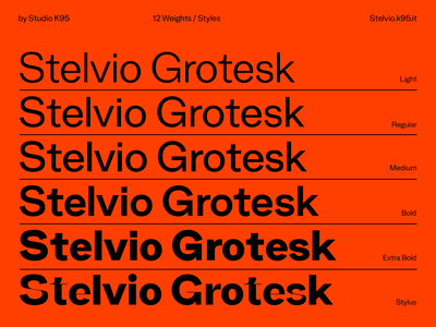 Stelvio Grotesk type design medium bold regular swiss grotesk glyphs typogaphy fonts font