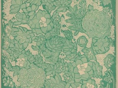 Intaglio Succulents