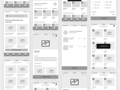 Wireframe Searching User Flow