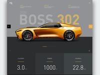 2020 Boss 302