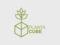 Planta Cube