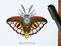 Traditional Moth
