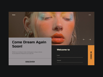 Theme login themes photography blog fashion web ui