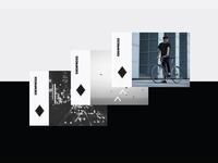Erenpreiss Sparrow postcards