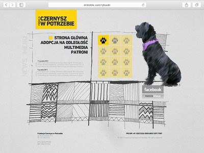 Black Russian Terrier Foundation webdesign website web ui ux design