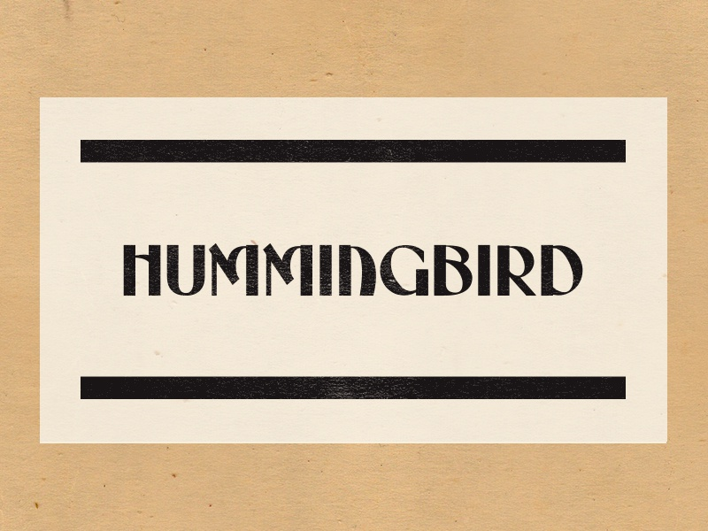 Fav Wilco Song texas logo texture illustration logotype packaging branding typography