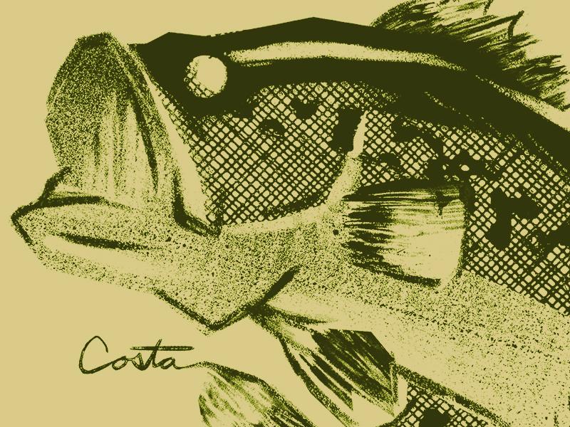 Largemouth Bass typography texture shirt pattern bass largemouth illustration fishing fish costa del mar outdoors apparel