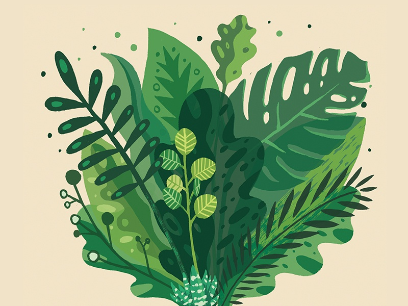 Plant-Based illustration plants