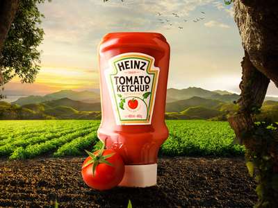 Heinz | Grown not made perspective heinz ketchup nature retouching manipulation food advertising