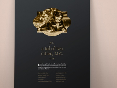 A Tail of Two Cities, LLC