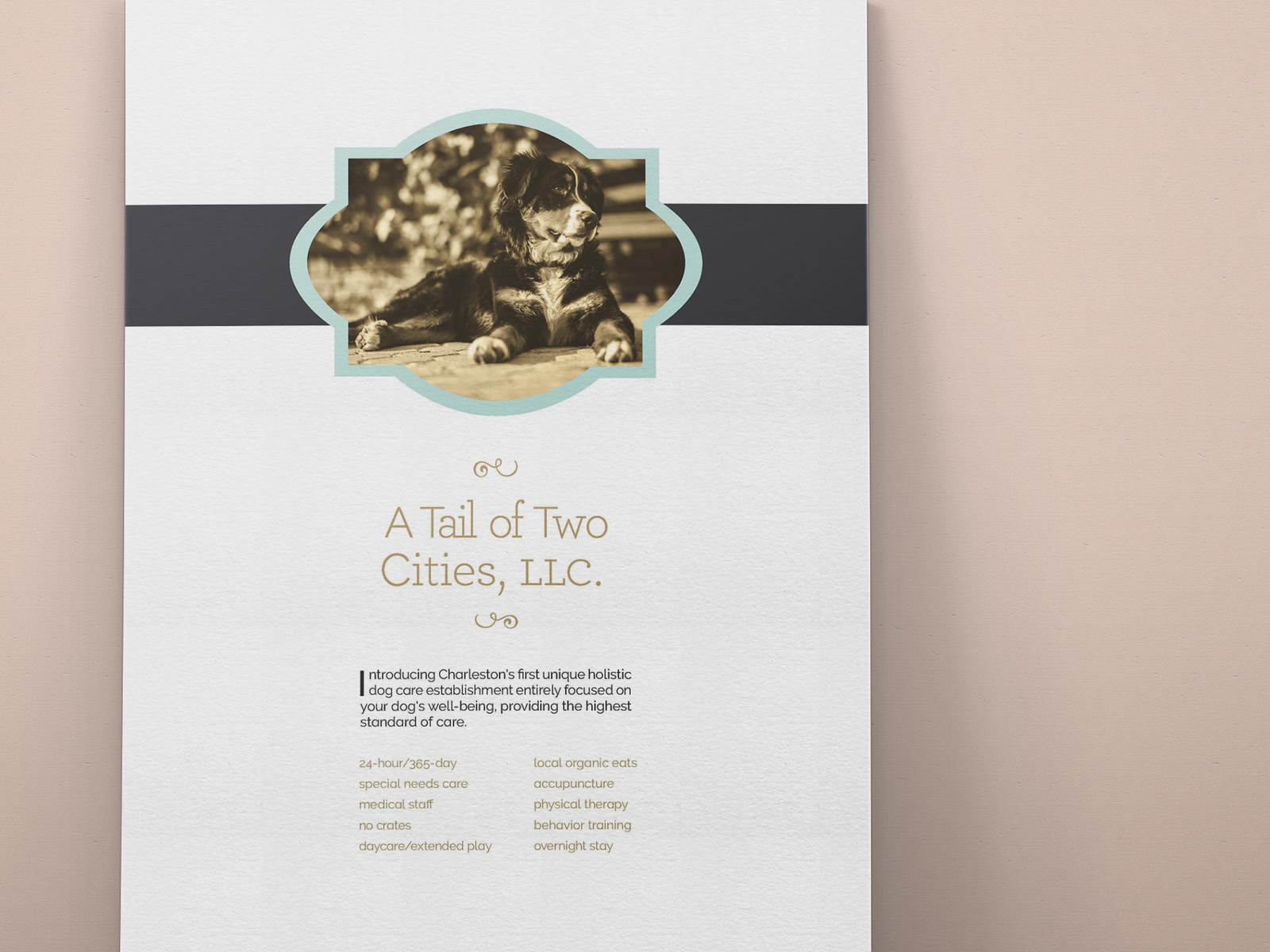 A Tail Of Two Cities Llc Lesson 2 Flyer Design Doggy Daycare Print