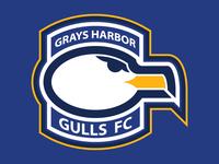 Grays Harbor Gulls