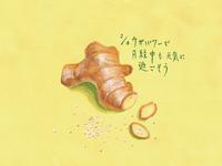 ginger Illustration / 生姜と岩塩のイラスト