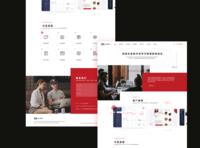 Company web #01
