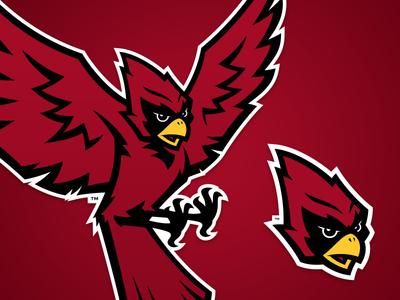 Raider Bird