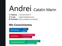 CV andrey example