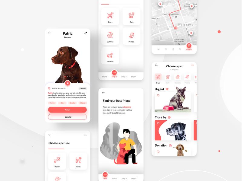 Pets Adoption App illustration branding ux mobile app icon design ui