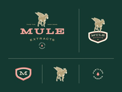 Mule Extracts - Branding wings mark extracts extract green color palette badge emblem cannabis branding cannabis logo cannabis animal mule branding portland design illustration type logo oregon