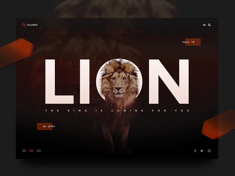 NatioWild Lion header interface homepage website ux ui product nature landing lion design art