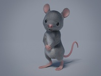 Mouse Close Up