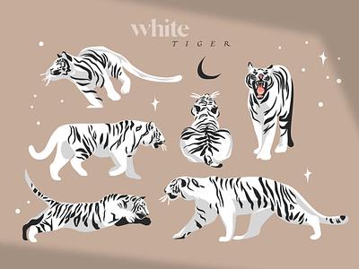 White tiger digital art drawing animals graphic character design celestial vectorart flat ipad pro procreate tiger graphic design logo design adobe draw abstract vector art cartoon illustration