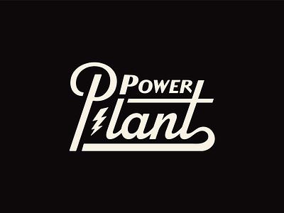 Power Plant power sales revenue
