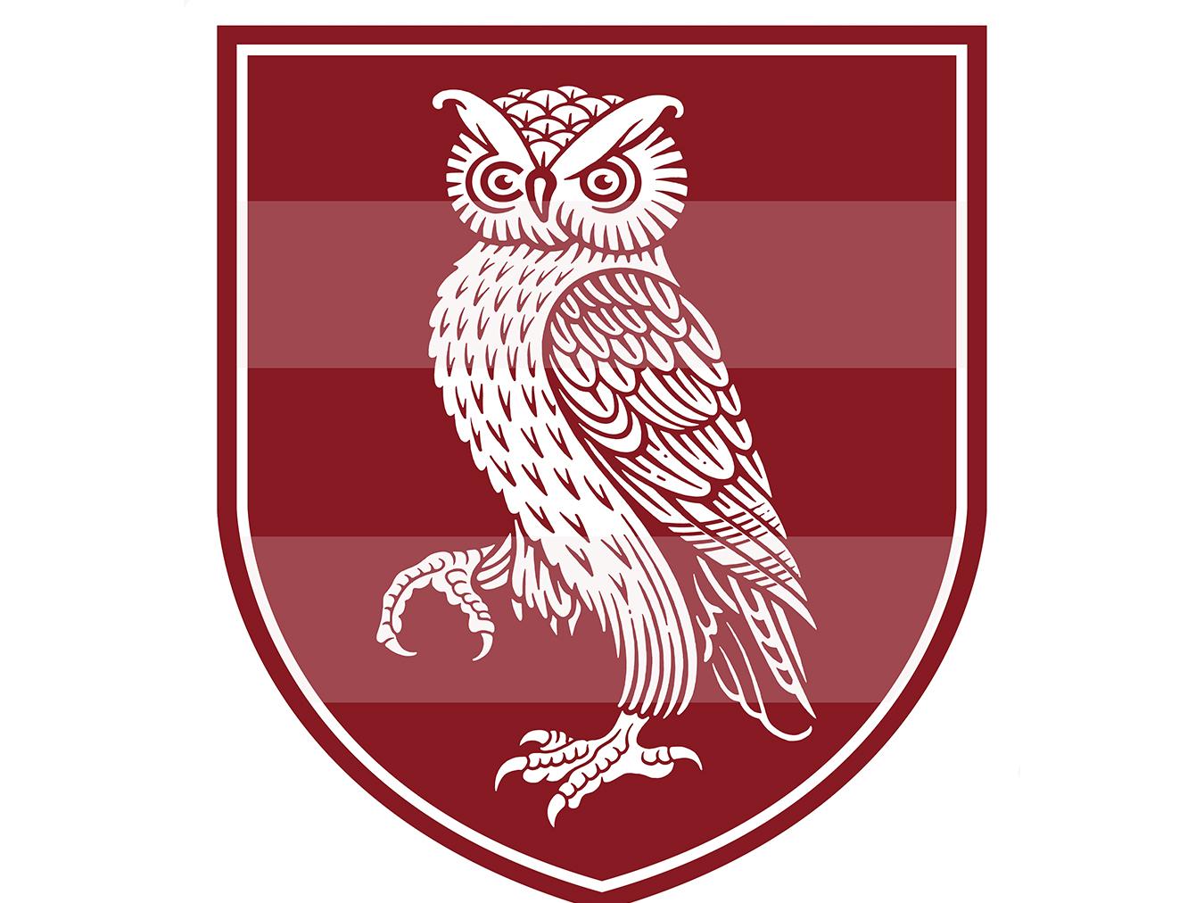 Owl Shield mascot logo owl heraldry branding logo woodcut roger xavier scratchboard