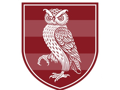 Owl Shield