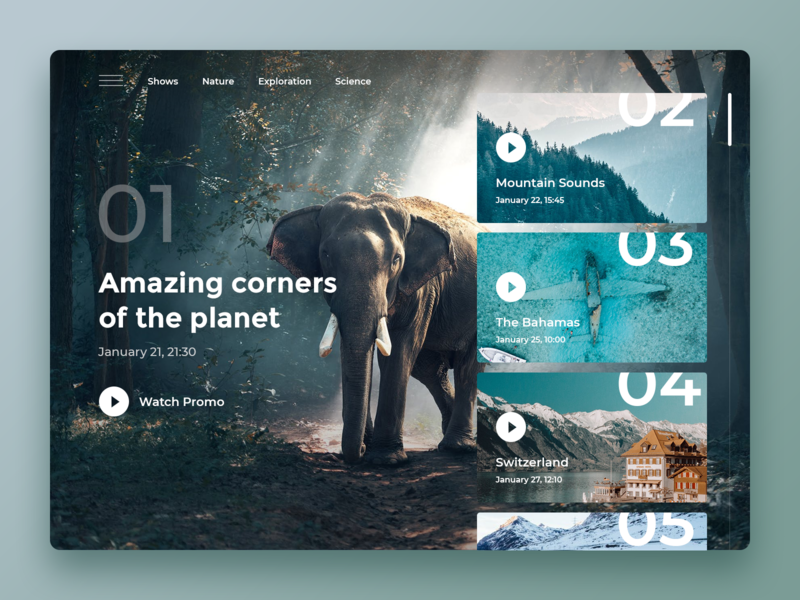 Nature Landing Page Concept natural player video concept landing page ui ocean sea elephant landingpage nature
