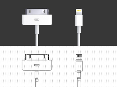 Apple 30 pin & Lightning connector (vector).