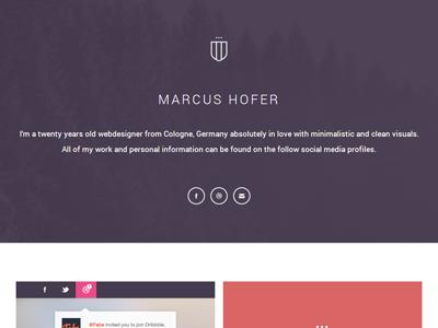 Portfolio Relaunch Idea portfolio relaunch metro flat colors header icons