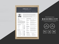 Aurelius Sume Accounts Officer Resume Template