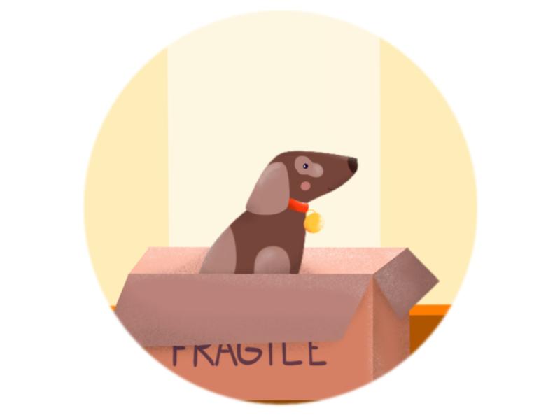Fragile doggy etheric agency home friend pet box dog drawing procreate illustration
