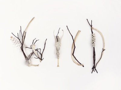 Wild Typography with Found Objects