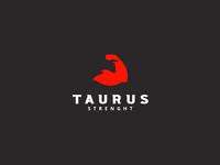 Taurus strenght