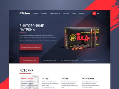 Tulammo.ru concept site