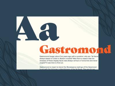 Type Exploration gastromond serif campaign identity branding typography