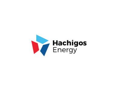 Hachigos Energy Identity