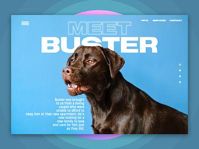 Pet Adoption Web CTA invision studio ux ui webpage cta blue pet lovers animals dogs dog pets pet web webdesign web design website