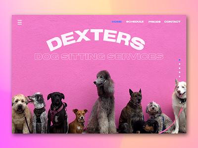 Web CTA | Dexters Dog Sitting Service cta invision dribbble invision studio web design orange blue pink dogs pets ux design ui design ux ui web
