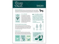 Wizard Of Oz Infographic