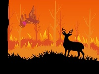 Dribbble in five elements of nature -Fire